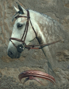 Dyon Anatomic Fancy Padded  Bridle with Flash