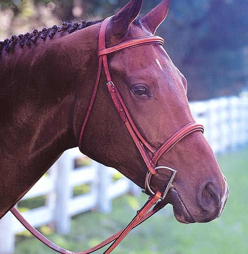 Edgewood Raised Fancy Stitched Padded Bridle