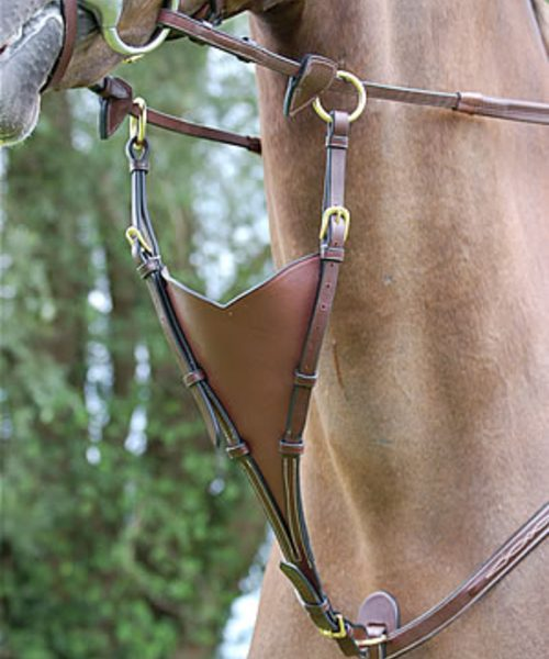 Dyon Irish Martingale Attachment