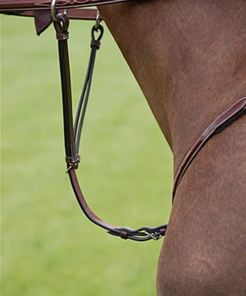 Dyon Running Martingale AttachmentStainless Steel