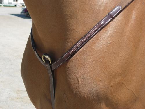 Dyon Breastplate Brass Fittings
