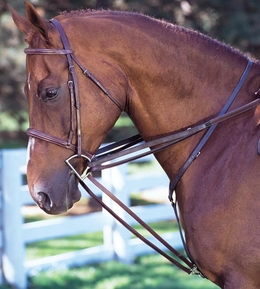 Buckle End Draw Reins