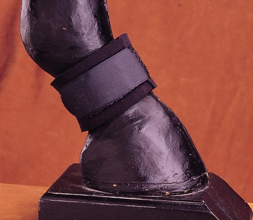 Neoprene Pastern Boot