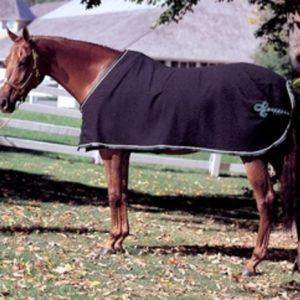 Custom Horse Blankets