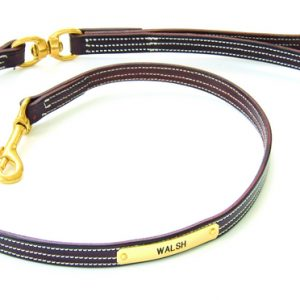 Walsh British Dog Leash 4'