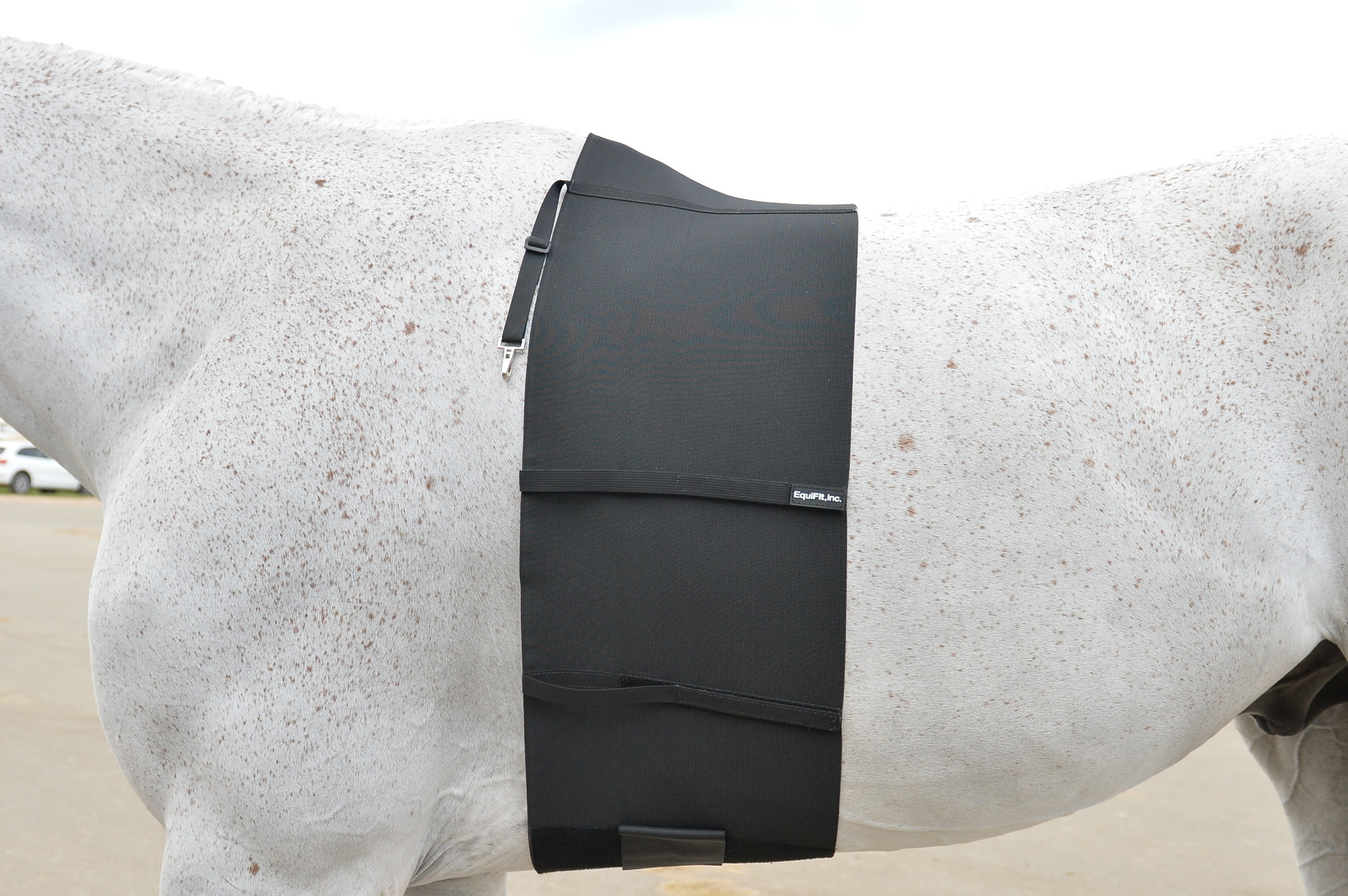 Equifit Belly Band Spur Protector
