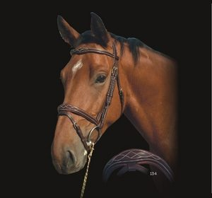 Dyon Signature Anatomic Fancy Padded Bridle with Flash