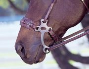 Herm Sprenger Leather Hackamore