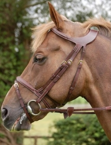Dyon Difference Flash Noseband Bridle