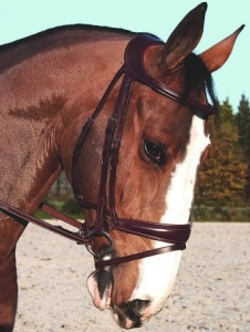 Dyon Difference Dressage Snaffle Bridle