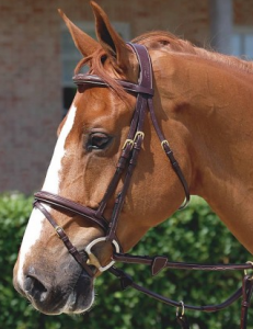 Dyon Anatomic Flash Noseband Bridle