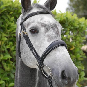 Dyon Anatomic Dressage Noseband Bridle