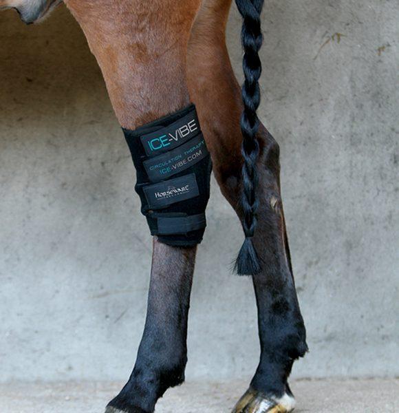 Ice Vibe Hock Wrap by Horseware Ireland