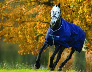 Amigo Pony Lite Turnout by Horseware Ireland