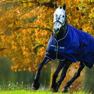 Amigo Pony Lite Turnout by Horseware Ireland
