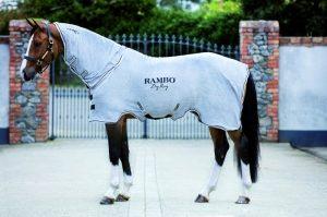 Rambo Dry Rug