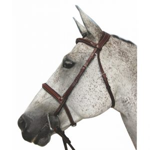 HDR Pro Mono Crown Padded Fancy Stitch Bridle