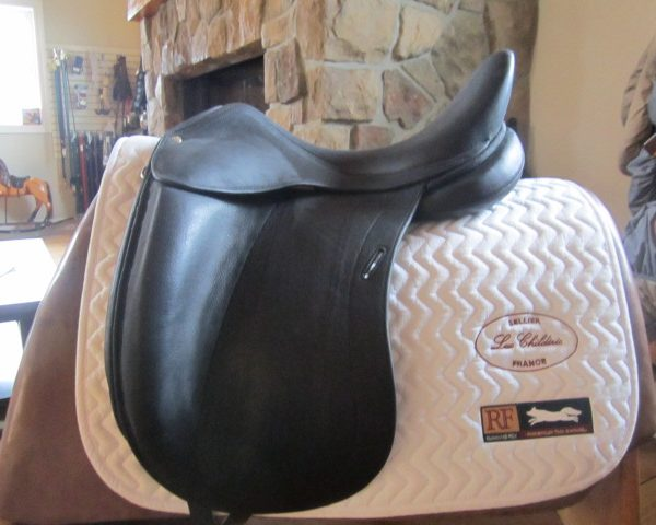 CON 709 17.5 DGP 2 DEMO Childeric Dressage