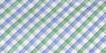 W4 Blue Green Check